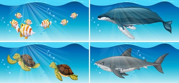 Подводные сцены с морскими животными Бесплатные векторы