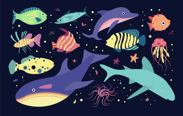 Underwater sea world dwellers. fishes and medusa, dolphin, killer, whale shark.