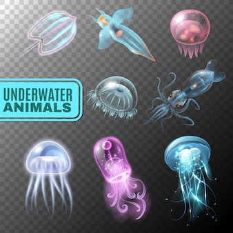 Underwater transparent icon set