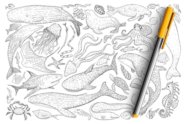 水中世界の動物の落書きセット。手描きのイルカ、カニ、タコ、オットセイ、魚、クラゲ、ヒトデのタツノオトシゴのコレクションが分離されました。