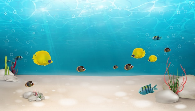 Underwater world nature scene background. ocean, sea bottom life with blue water, seagrass, exotic fish, bubbles, seaweed, rays of sunshine. underwater marine life landscape.