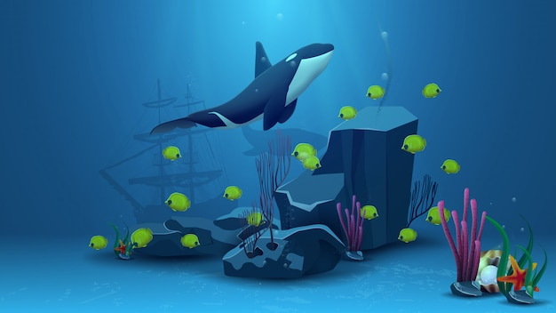 Underwater world, vector illustration with killer whale