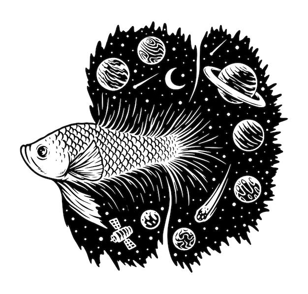 白で隔離される宇宙ベタの魚