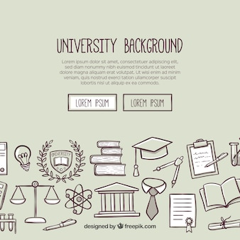 University background in flat style