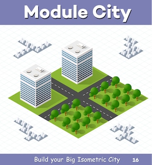 Urban  module  for  the  construction  and  design  of  large  isometric  city