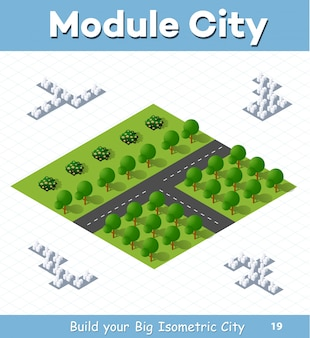 Urban module for the construction and design of large isometric city.