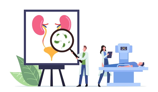 Urinary tract infection, uti medical concept with tiny doctors and sick patient on mri characters at huge anatomical poster with urinal organs bladder and kidneys