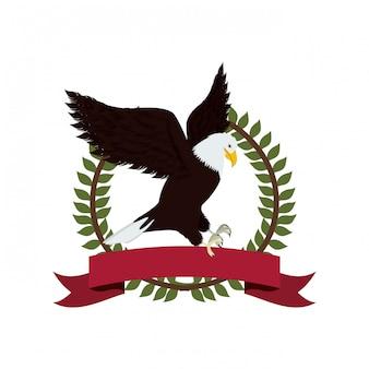 미국 디자인