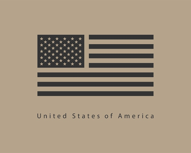 Usa flag vector. modern style united states of america symbol. american banner design element.