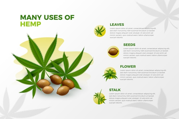 Uses of hemp infographic template