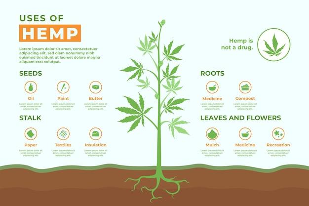 Uses of hemp - infographic