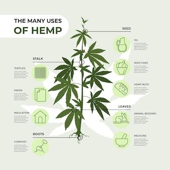 麻の使用-インフォグラフィック