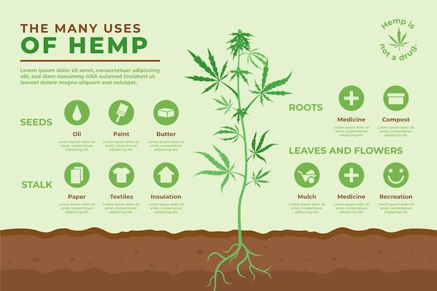 麻の使用-インフォグラフィック 無料ベクター