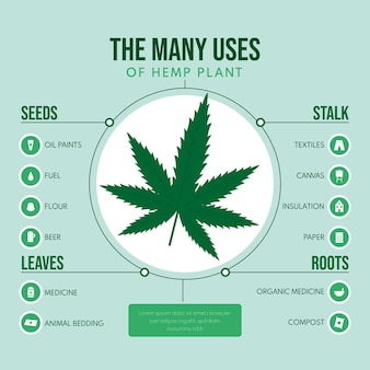 麻の植物のインフォグラフィックの使用