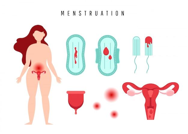 난소 기관, 면봉, 개스킷, 생리 컵 및 혈액 방울이있는 자궁.