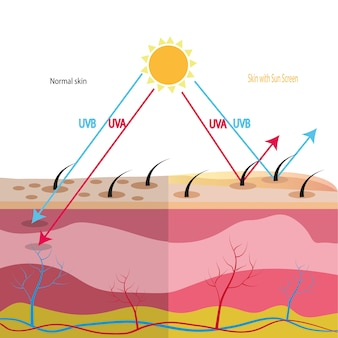 Uv protection with cell skin