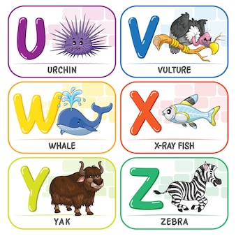 動物のアルファベットuvwxyz