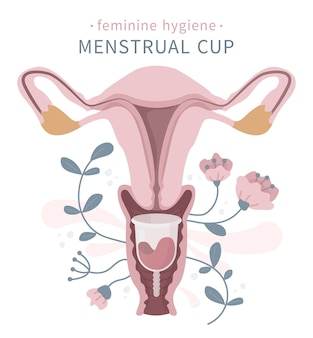 Vagina with menstrual cup, flowers, blood collector for women period critical days, hygiene product