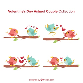 Valentine bird couple collection