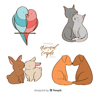 Valentine domestic animal couple collection