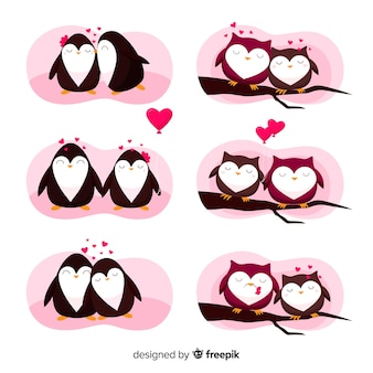 Valentine owl and penguin couple collection