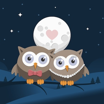 Valentine owls in love at night