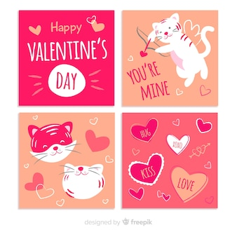 Valentine's day cupid cat card pack