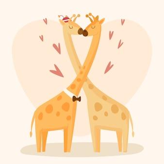 Valentine's day giraffe couple