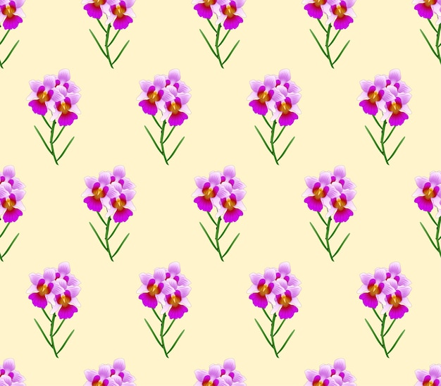 아이보리 베이지 색 배경에 vanda miss joaquim orchid