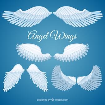 Variety of angel wings