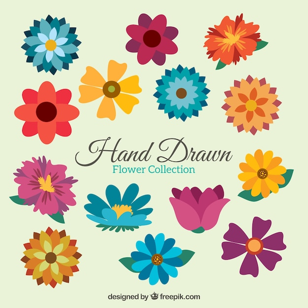 picture regarding Printable Colored Flowers called Flower Vectors, Shots and PSD documents No cost Down load