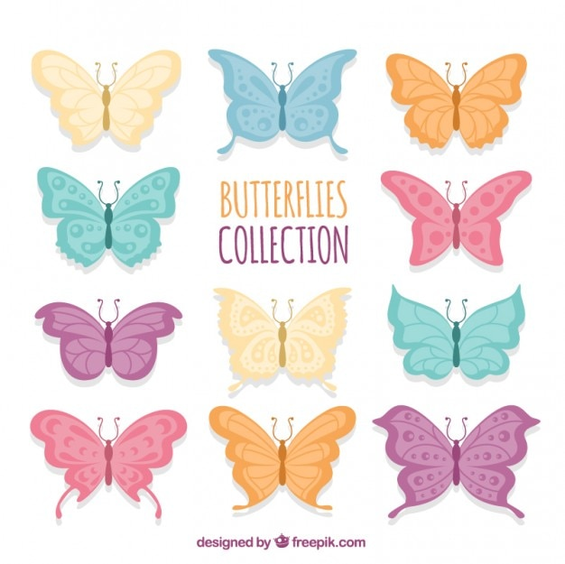Variety of colors butterflies