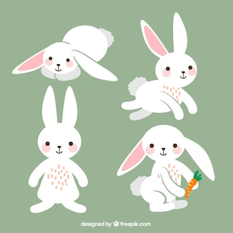 Variety of cute easter rabbits