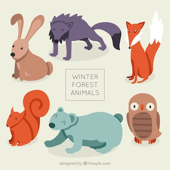Variety of cute forest animals