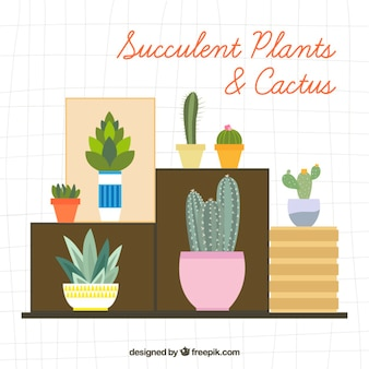 Variety of decorative plants and cactus in flat design