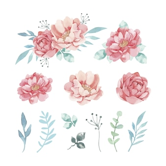 Variety of decorative watercolor flowers and leaves