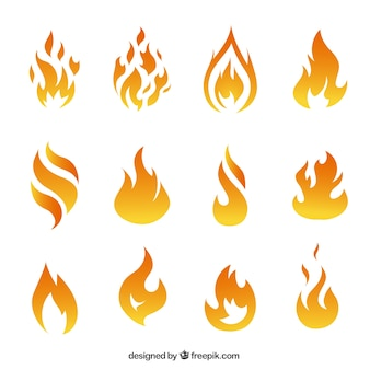 Variety of fire flames