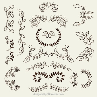 Variety of floral ornaments