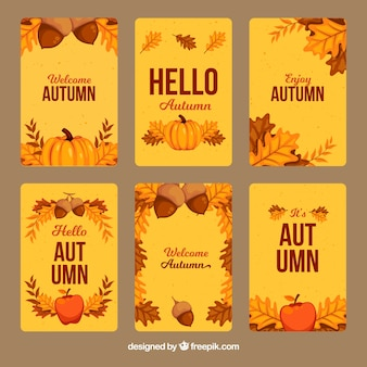 Varietà di carte di autunno disegnate a mano