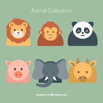フラットなデザインで様々な動物