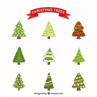 Разнообразие елки