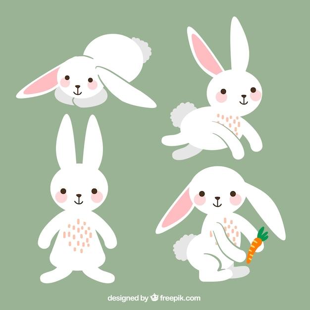 rabbit vectors photos and psd files free download rh freepik com rabbit vector png rabbit vector png