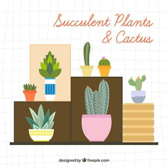 평면 디자인의 다양한 장식 식물과 선인장 무료 벡터