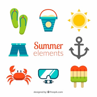 Variety of summer elements in flat design