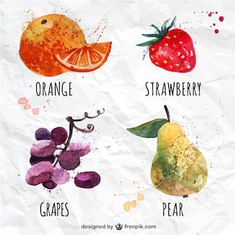 Variety of watercolor fruits