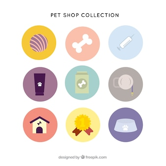 Variety of pet items in flat style