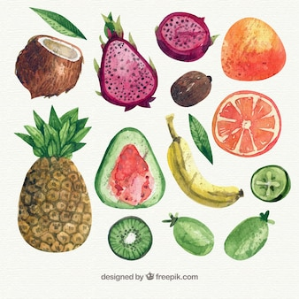Variety of pieces of fruit in watercolor style