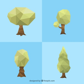 Variety of polygonal trees