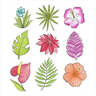 Varietà di fiori e foglie tropicali