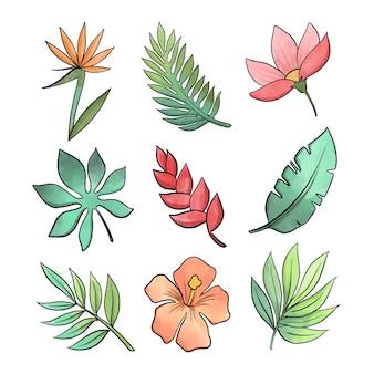 Varietà di foglie e fiori tropicali